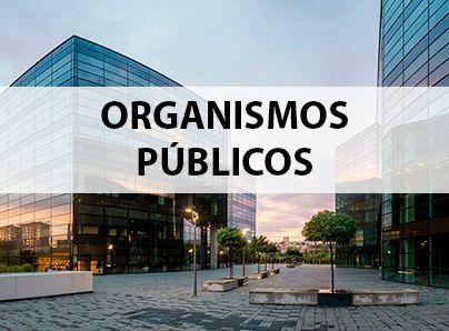 Seguros para Organismos Públicos