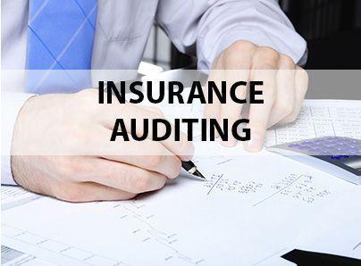 Alkora. Insurance auditing
